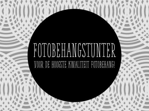 Webshop of the week Fotobehangstunter