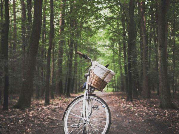 leuke routes om met vriendinnen te fietsen
